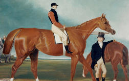Harley Gallery Runners and Riders Exhibition Now Open