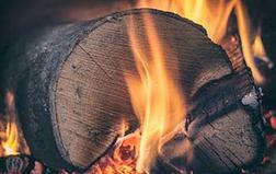 Stock up with fire wood from Welbeck Woodyard