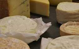 Introduction to Cheesemaking - Two Days